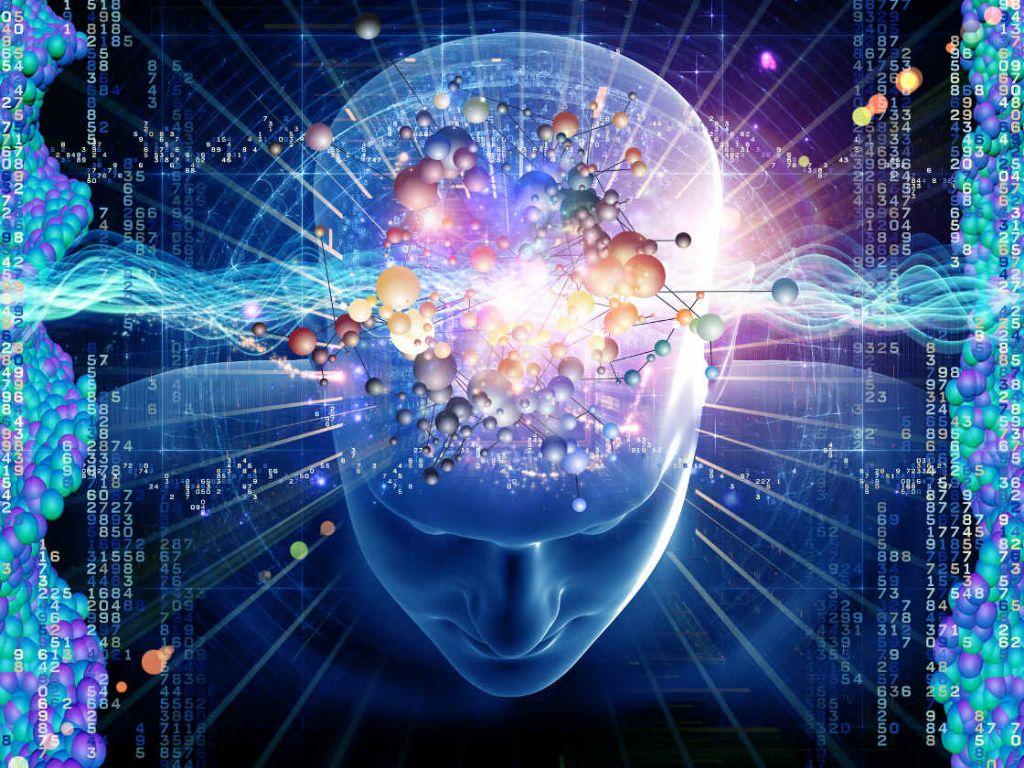 Mistérios do cérebro