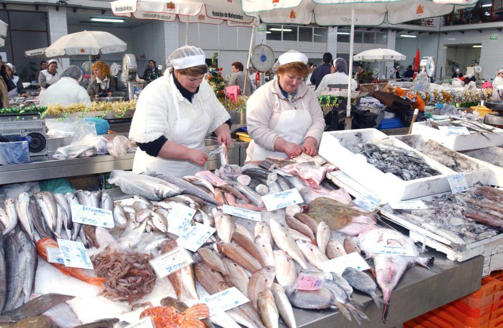 Portugal tem o Melhor Peixe do Mundo