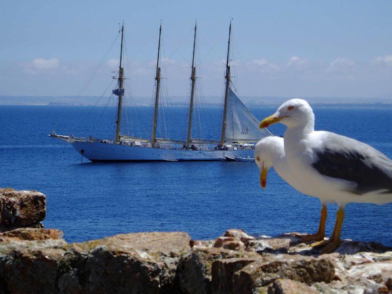 Viagem às maravilhosas Ilhas das Berlengas