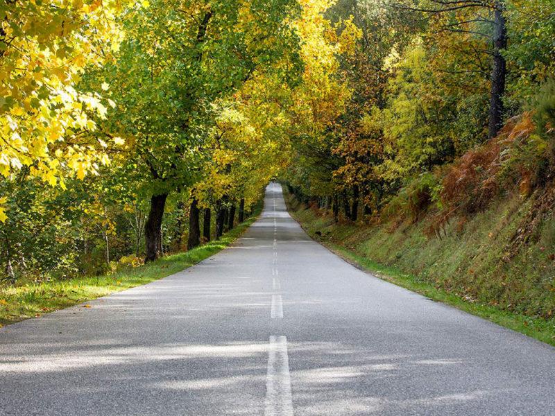 As estradas mais bonitas de Portugal para viajar de carro