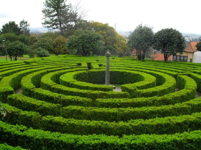 12 jardins encantadores para descobrir no Porto
