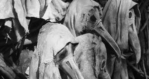 A medicina do passado em 27 fotos históricas arrepiantes