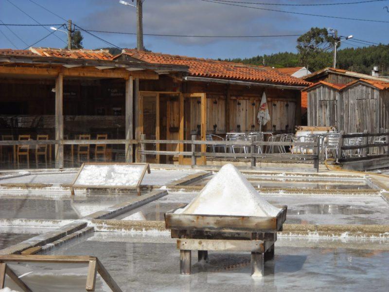 O milagre do sal nas salinas de Rio Maior
