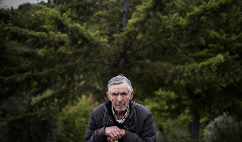 Há 28 anos um povo lutou contra os eucaliptos. E a terra nunca mais ardeu