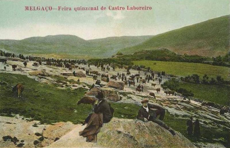 O Dialecto Castrejo