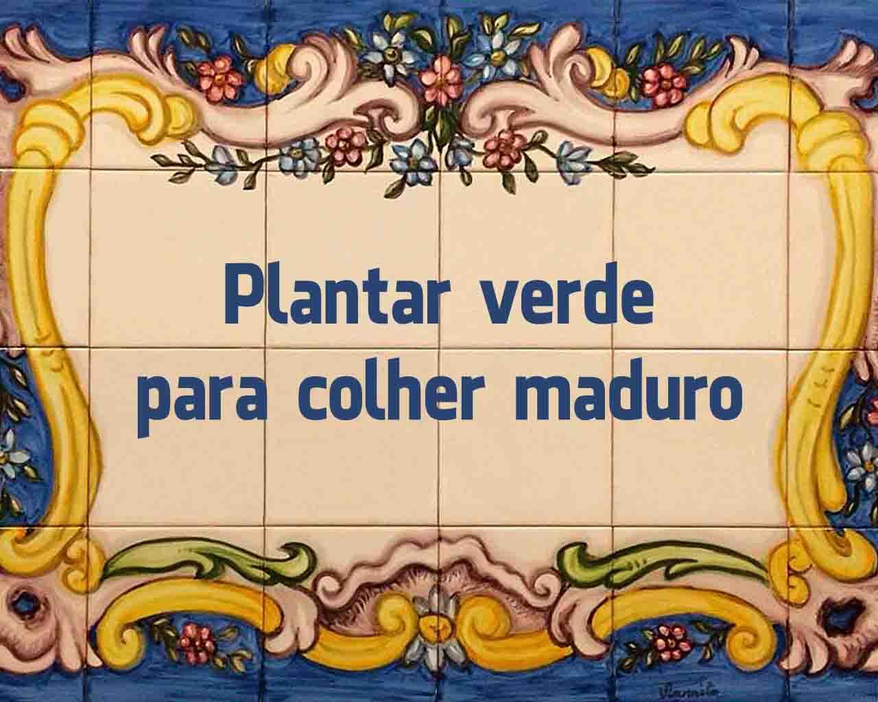 melhores provérbios portugueses