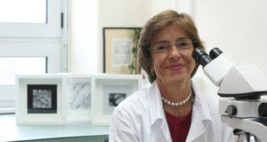 Fátima Carneiro: é portuguesa a patologista mais influente do mundo