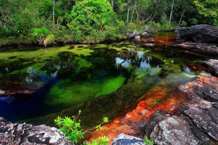 Rio Caño Cristales, Colômbia