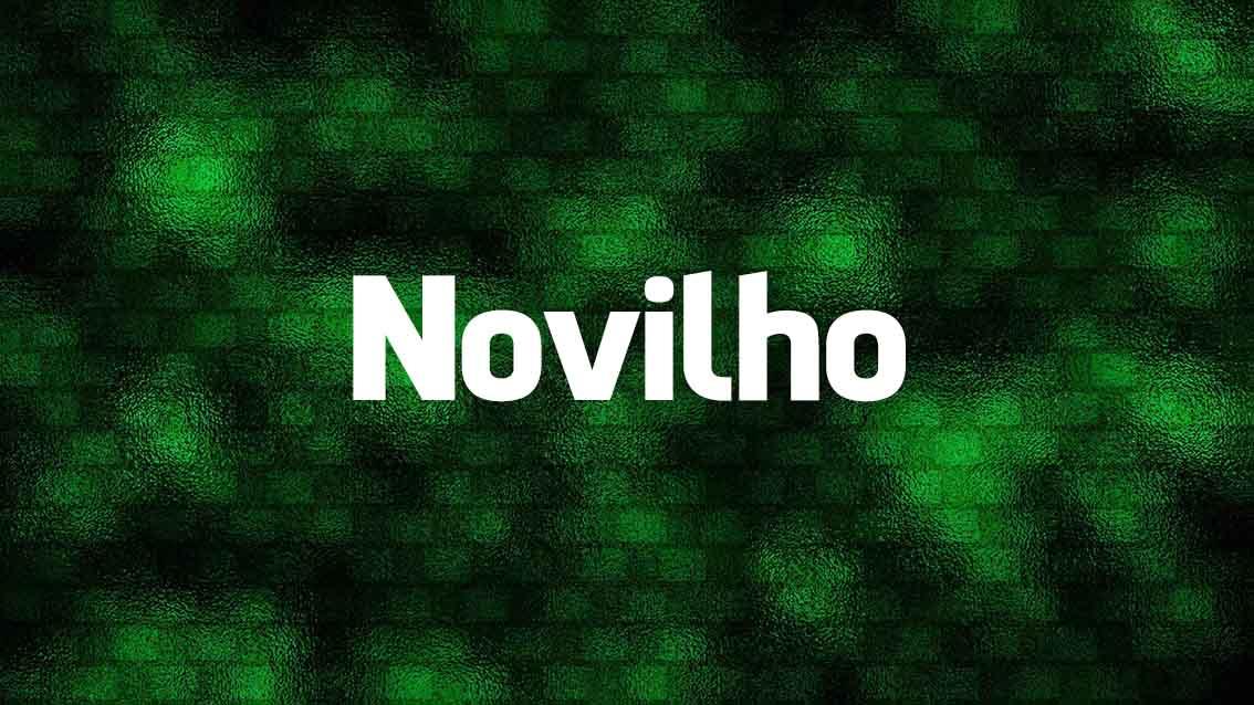 Língua Portuguesa: 10 palavras que roubamos aos espanhóis