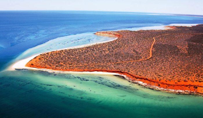 Shark Bay, Austrália