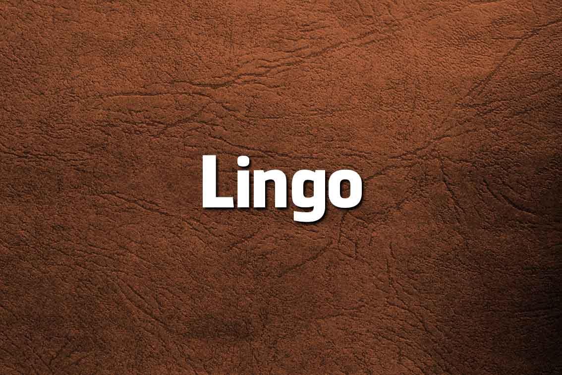 10 palavras que Portugal deu aos ingleses