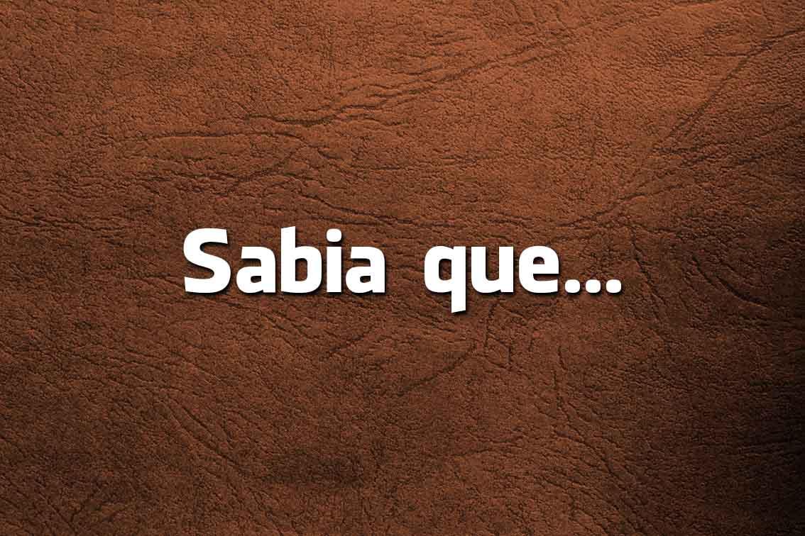Língua Portuguesa: escreve-se Febras ou Fêveras?