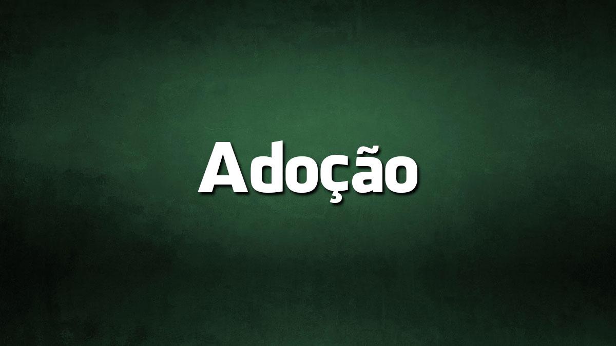 Língua Portuguesa: 8 palavras que mudaram com o AO e porquê