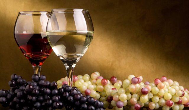excelentes vinhos do Douro