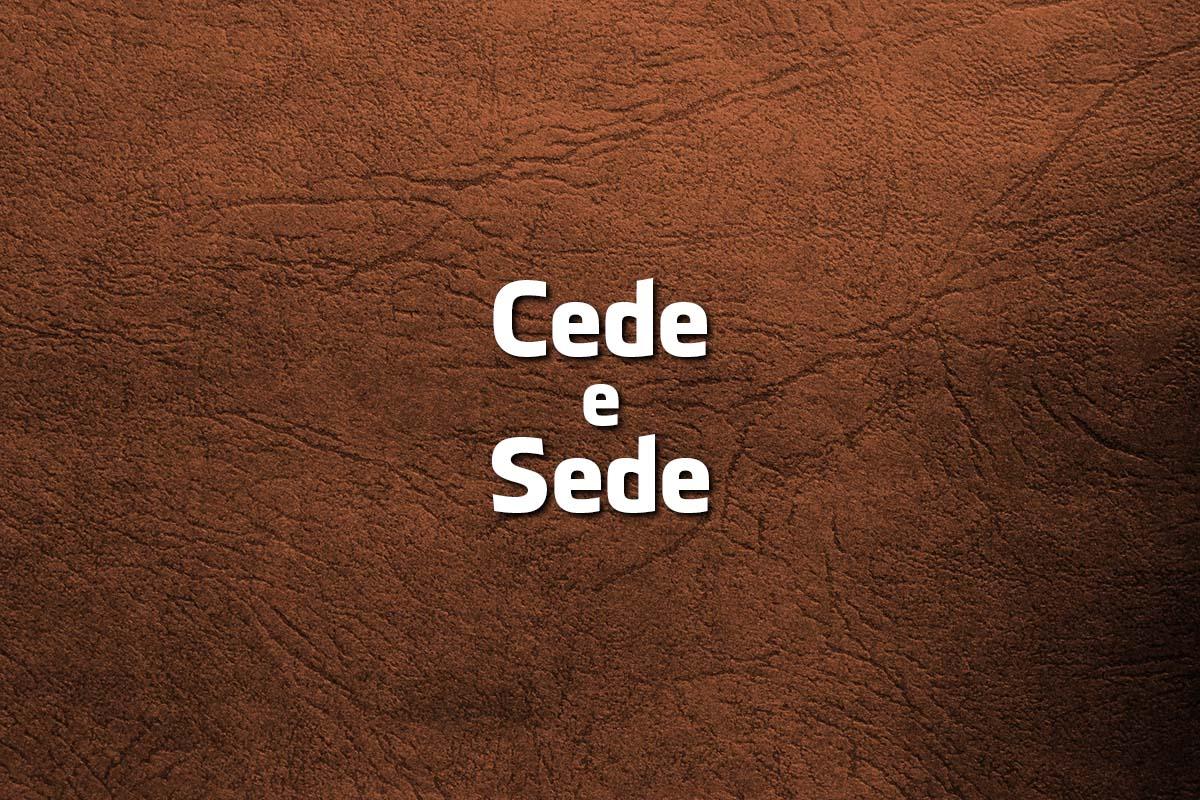 palavras parecidas da Língua Portuguesa