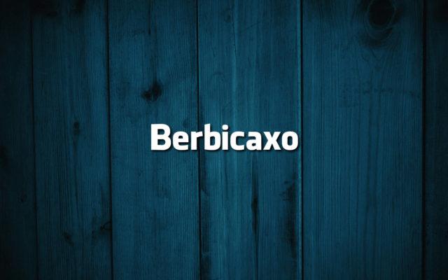 erros comuns da língua portuguesa