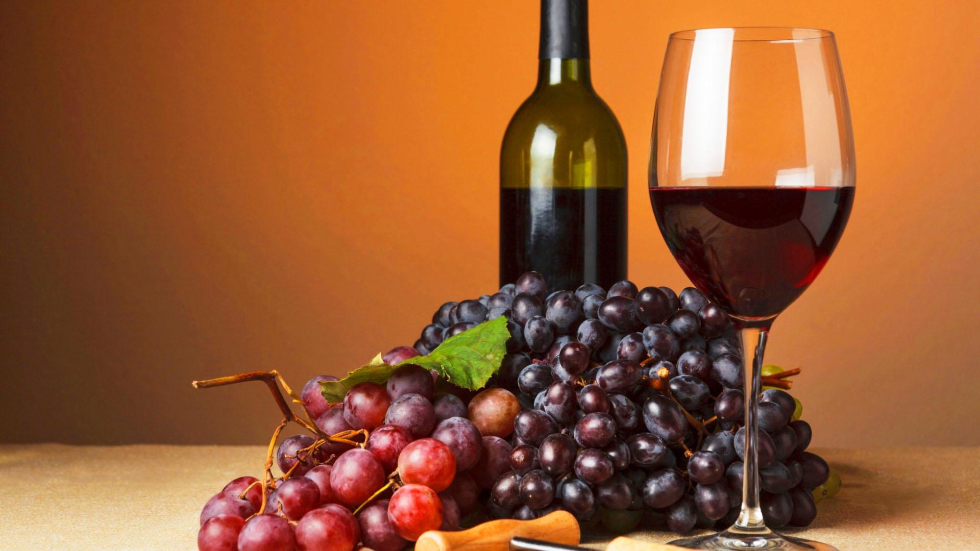 Vinhos Tintos infalíveis