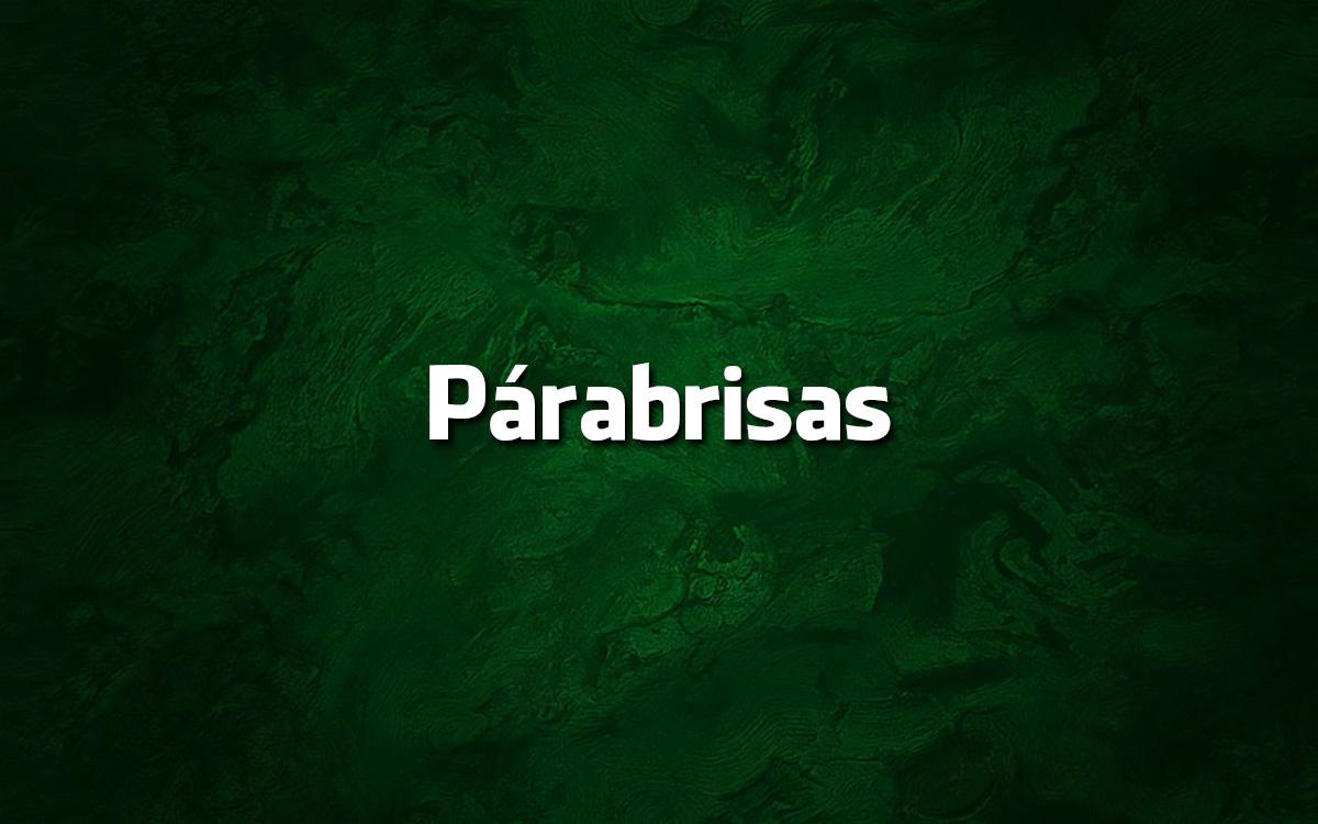 Párabrisas é erro de português?