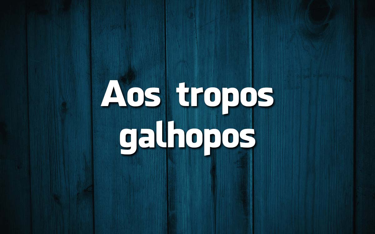 14 frases feitas da Língua Portuguesa e o seu significado