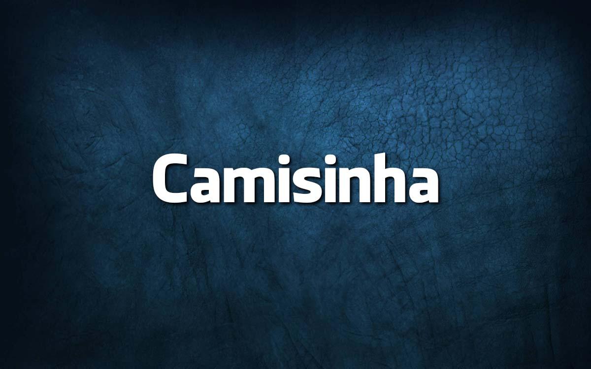 palavras brasileiras que confundem