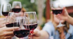 Dos Vinhos Tintos aos Rosés conheça os mais premiados