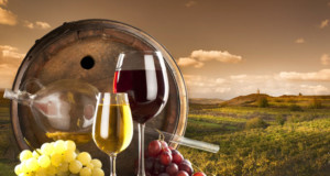 mitos sobre Vinho