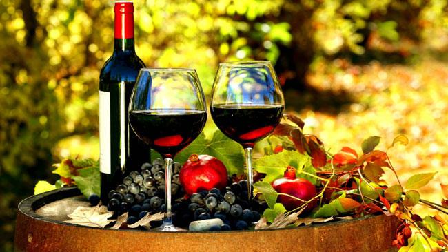 15 razões para beber vinho