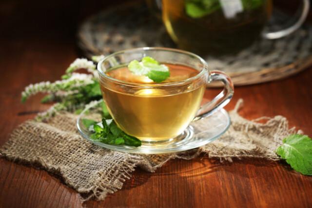 beber chá todos os dias