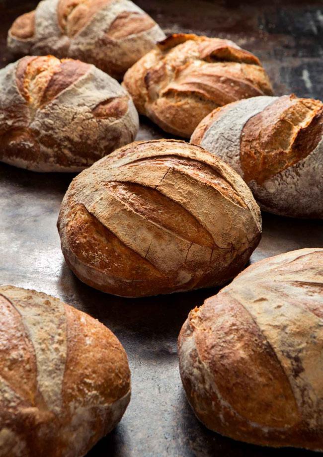 malefícios e benefícios do pão