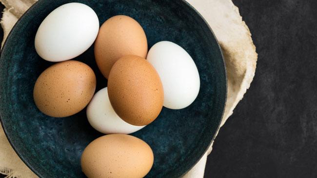 o que precisa saber sobre o ovo