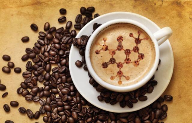 factos sobra a cafeína