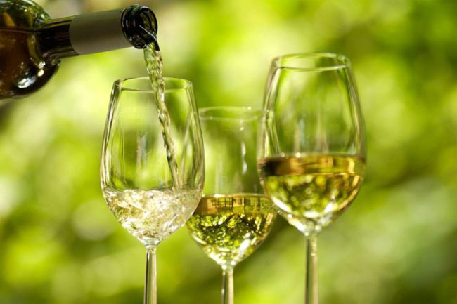 razões para beber Vinho Verde