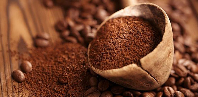 factos científicos sobre café