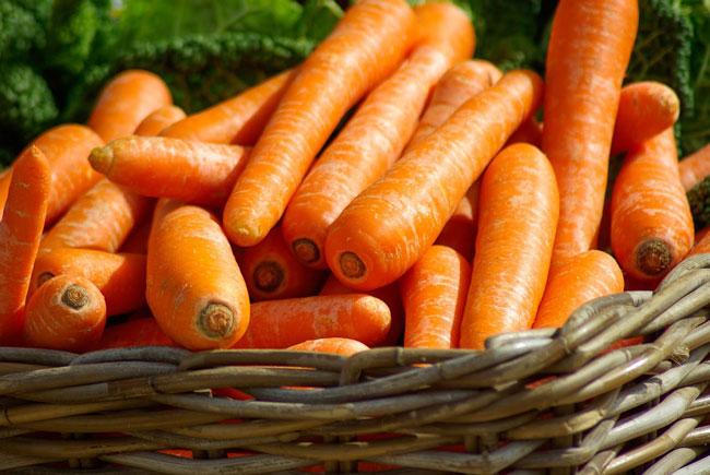 comer 2 cenouras por dia