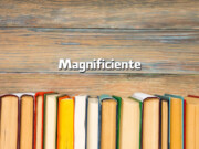Magnificiente