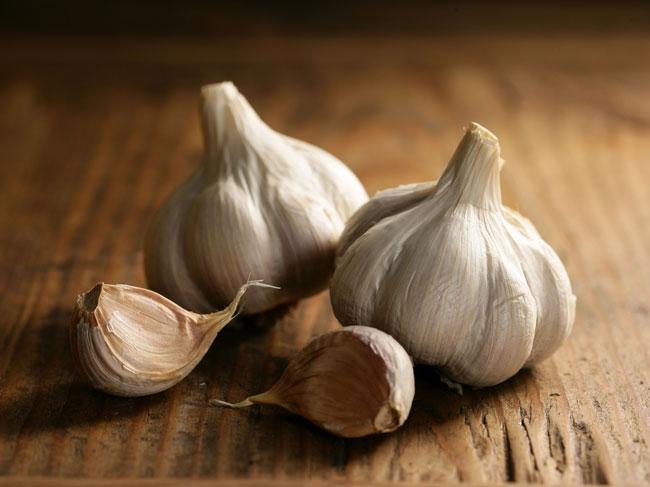 benefícios do alho para a saúde