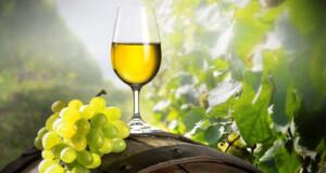 Vinhos Verdes abaixo de 10 euros