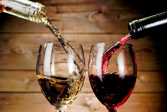 bons vinhos tintos