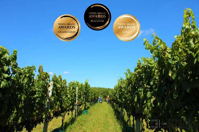 vinícola que vale ouro no Wines of Brazil Awards