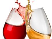 vinhos abaixo de 20€