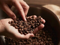 melhores grãos de café