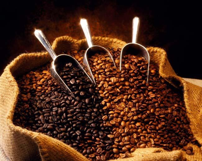deve escolher café em grãos