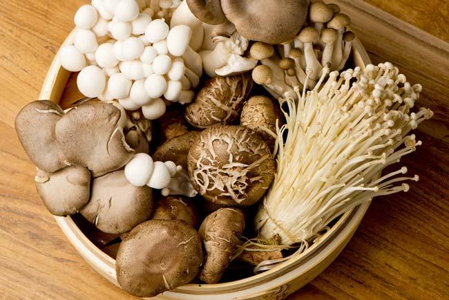 razões para comer cogumelos