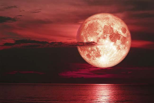relação entre a lua e cada signo