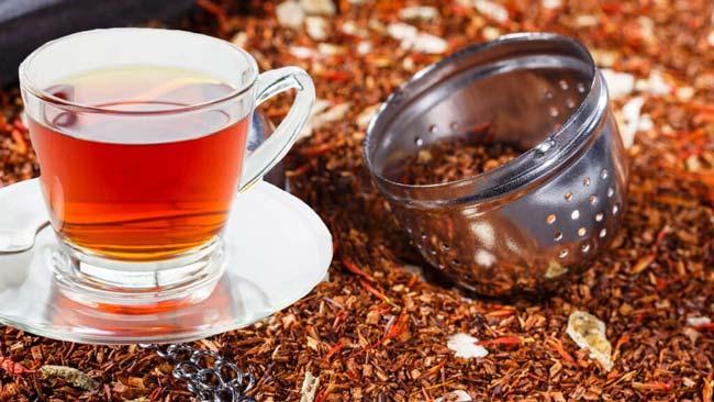 melhores chás para emagrecer