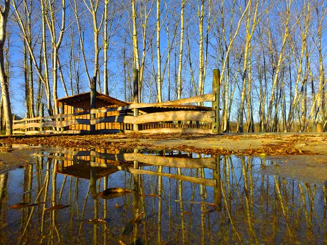 maior lagoa natural