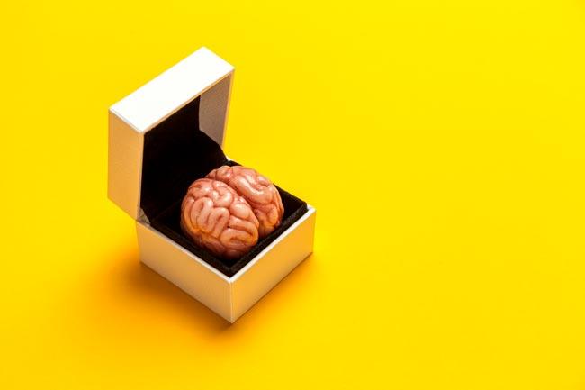 tempero que melhora a memória
