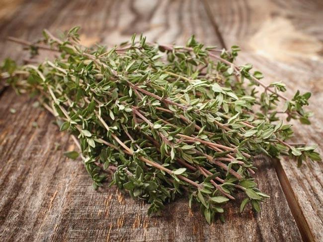 temperos com ervas e especiarias